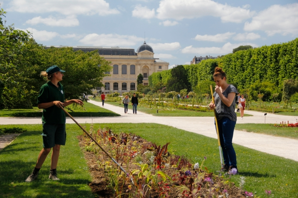 Tendering to the Jardins des Plantes.