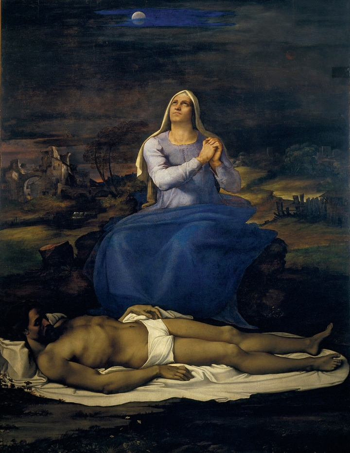 michelangelo-sebastiano-x8991