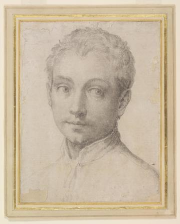 Francesco Salviati, Young man looking to his left, c.1540. Victoria & Albert Museum, London