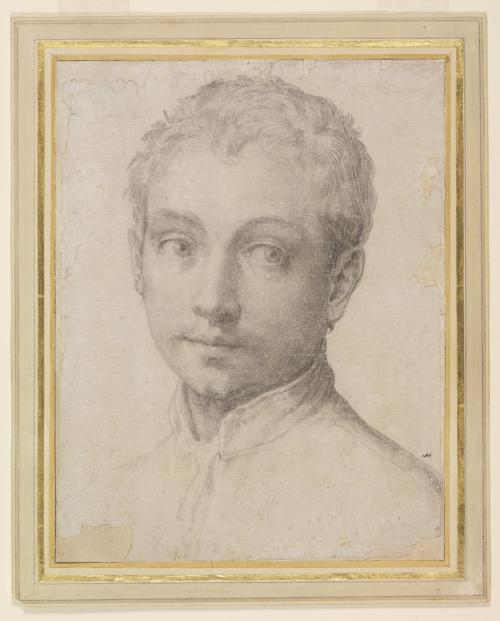 Francesco Salviati, Young man looking to his left, c.1540. Victoria & Albert Museum, London